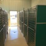 New Clinic Kennel II